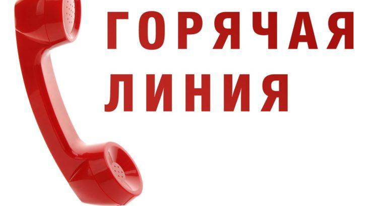 Горячая линия. Специалисты Росреестра отвечают на вопросы жителей Хабаровского края