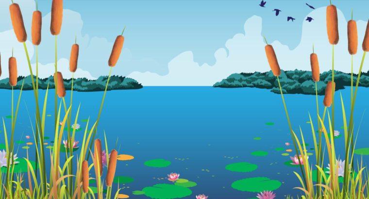 Инвестор из Комсомольска-на-Амуре планирует к лету обустроить зону отдыха с пляжем и кафе у озера Рица в Хабаровске.