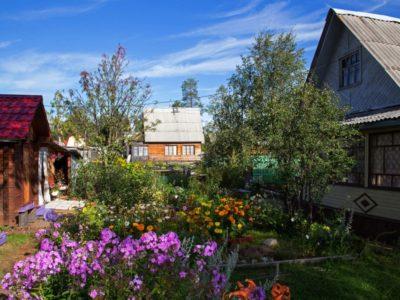 У дачников  Хабаровского края остался один год, чтобы успеть оформить дома по «дачной амнистии».