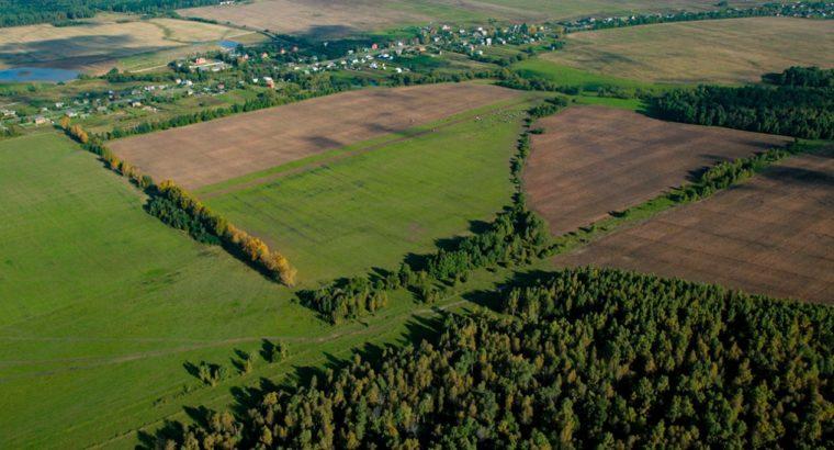 Управление Росреестра по Хабаровскому краю проведет инспекцию «дальневосточных гектаров»