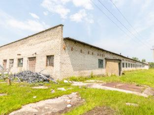 Продам готовую свиноферму район с. чёрная речка