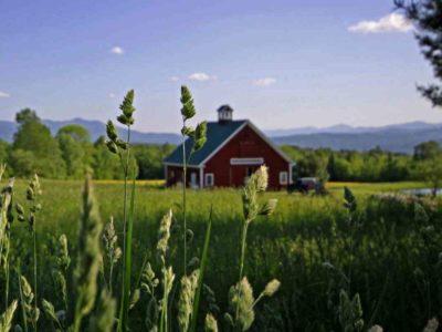 Фермерам разрешили строить дома на своих наделах. Закон опубликован в Российской газете.