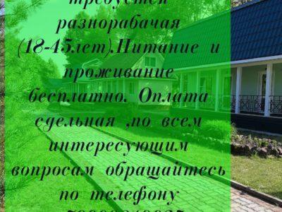 На базу отдыха в п. Солонцовый требуется — разнорабочая